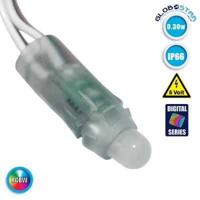 LED Magic Digital Pixel Module Φ1.4 CM RGBW 0.3W 5 Volt SET 50 pcs GloboStar 30545