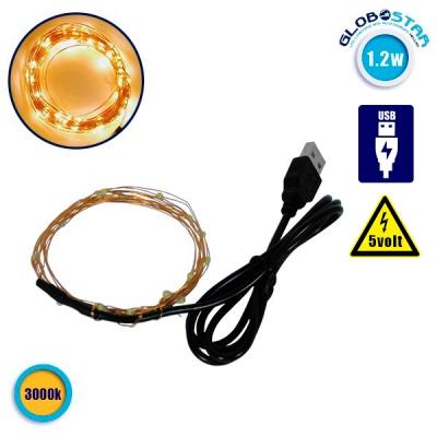Διακοσμητική Γιρλάντα 2 Μέτρων 20 LED USB 5 Volt 1.2 Watt με Χάλκινο Συρμάτινο Καλώδιο Θερμό Λευκό 3000k GloboStar 80808